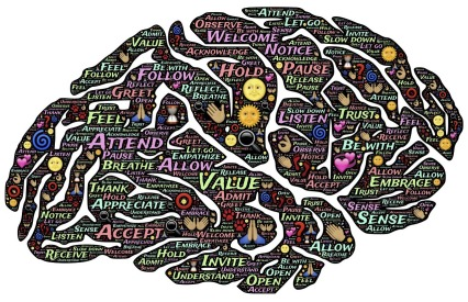 brain-744207_1280